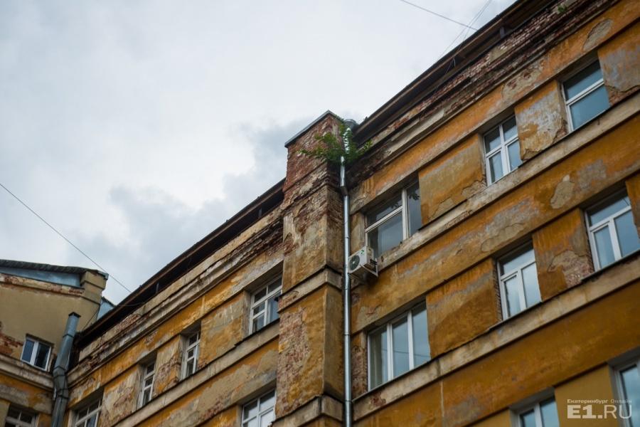 На крыше памятника архитектуры выросли деревья.