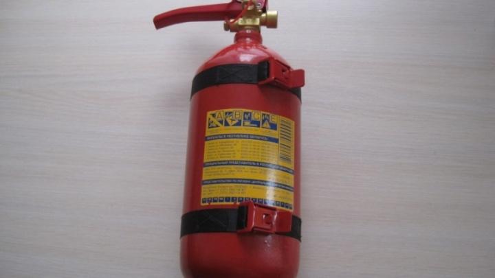 Жители Бревенника купили дорогие огнетушители у мошенников, прикрывавшихся проверкой пожарной части