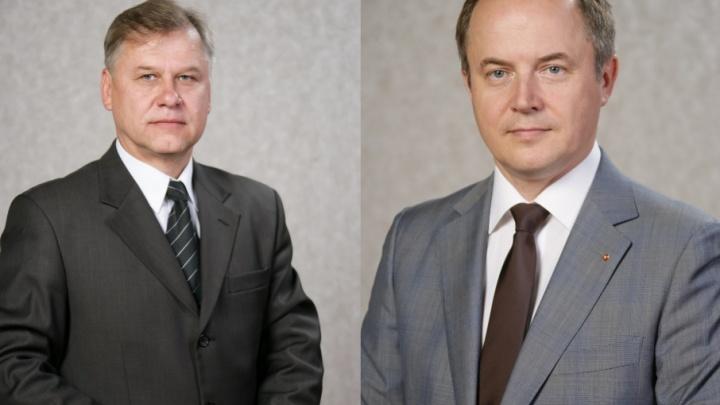 Двух депутатов в Ярославской области лишили мандатов из-за деклараций
