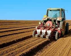 Ярославский филиал «Россельхозбанка» поддержит аграриев