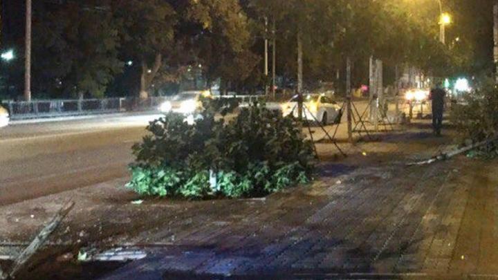 В Ростове на Большой Садовой иномарка вылетела на тротуар и сбила деревья