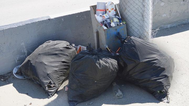 «Считаю, что меня услышали»: после замечания мэра с улиц Челябинска вывезли 836 мешков мусора