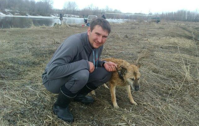 Житель Самары спас собаку, которая провалилась под лед на реке Татьянке