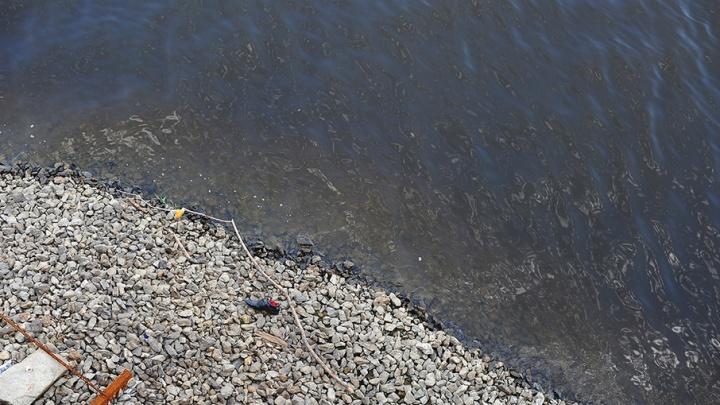 Водолазы ищут утопленника в пруду Студенческом