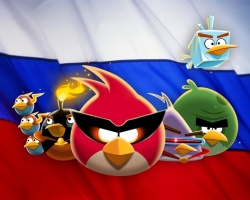 Angry Birds следят за нами