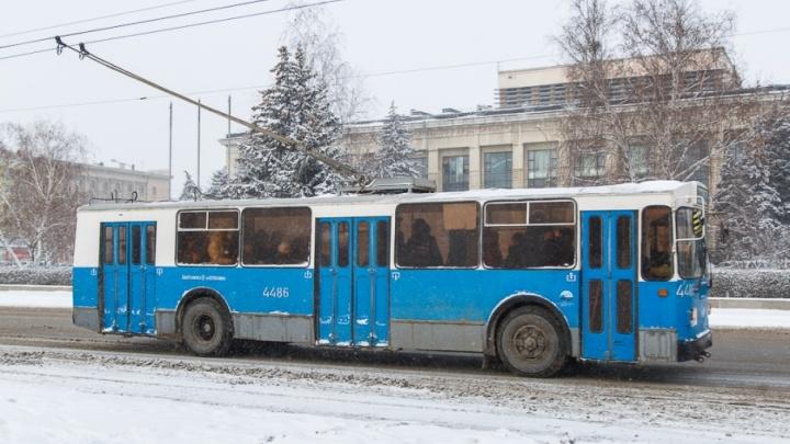 Волгоградские борцы за троллейбусы назвали город газовой камерой