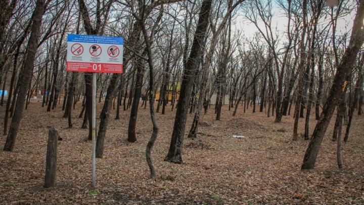 Ростовчане выбрали три парка, которые мэрия благоустроит до конца года