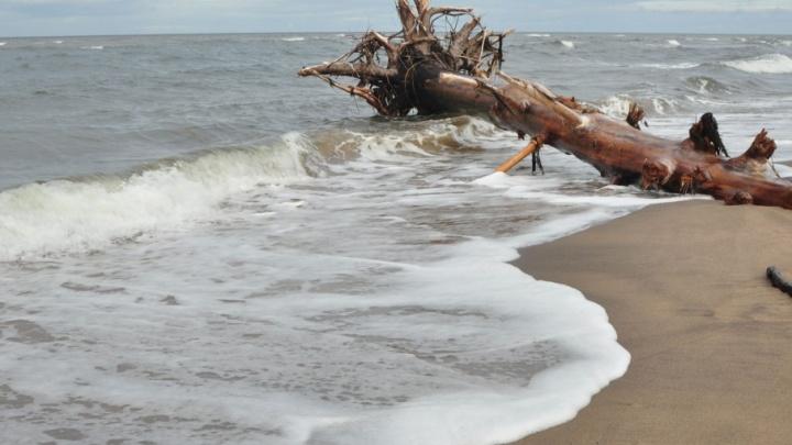 Берег одного из Соловецких островов очистили от опасных газовых баллонов