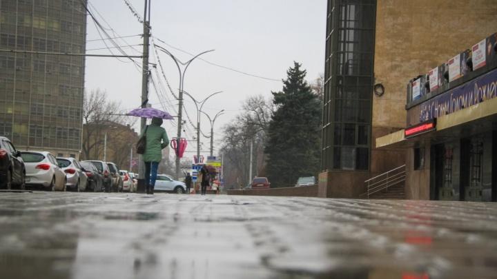 Синоптики: на выходных температура в Ростове поднимется до +10°С