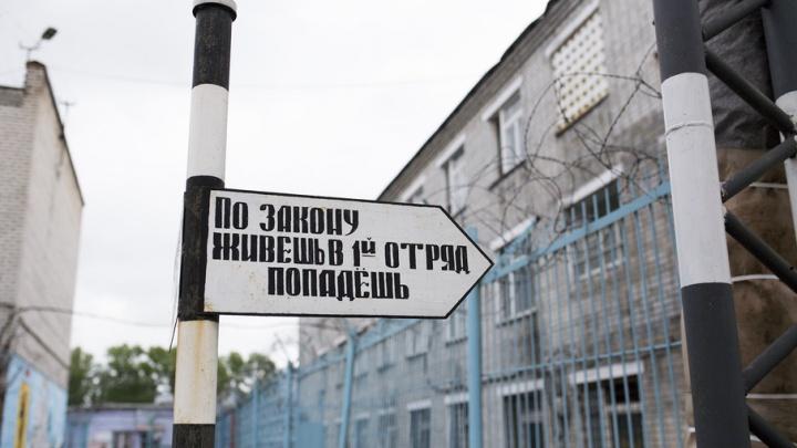Теплые полы и свежая выпечка: как живут заключенные в ярославской колонии