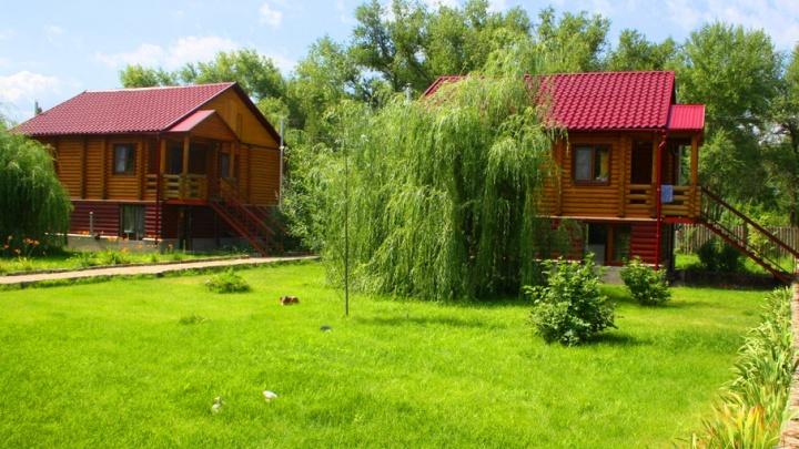 Открываем сезон отпусков: волгоградские турбазы готовы удивлять гостей
