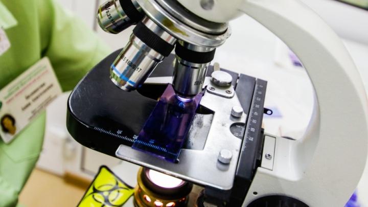 Антибиотики бьют по иммунитету