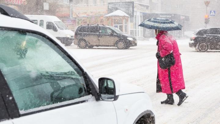 Чиновников и спецслужбы Волгограда выгнали на борьбу с «большим» снегом