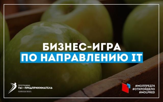 В Челябинске пройдет бизнес-игра для покорителей Кремниевой долины