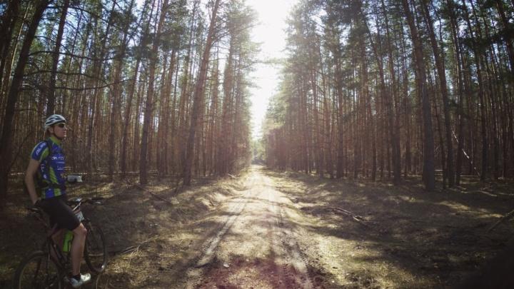 Топ мест для самарских велосипедистов: маршруты для опытных и начинающих