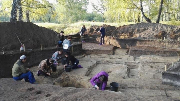 Городище в форме бабочки: в Тюменской области раскопали поселение начала железного века