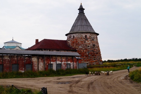 Участники форума обсудят развитие Соловецкого архипелага