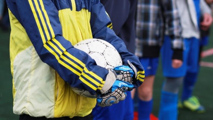 Ярославских любителей футбола пригласили в тур на матч Россия — Бразилия