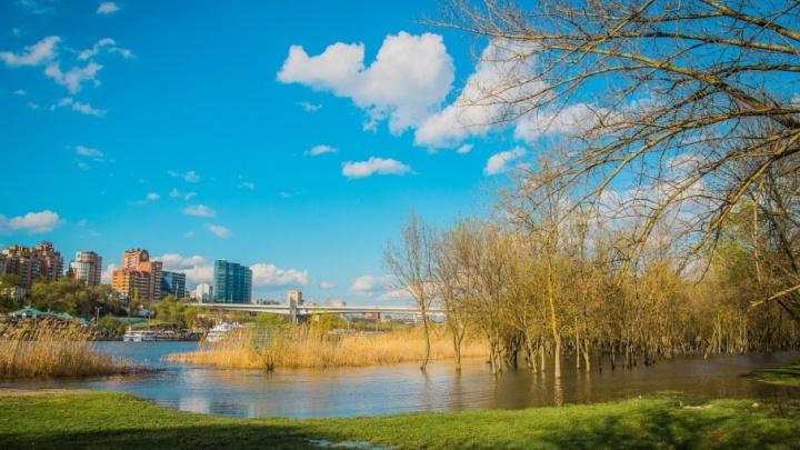 Разлившийся Дон, весеннее небо и деревья в воде: фоторепортаж с затопленного левого берега