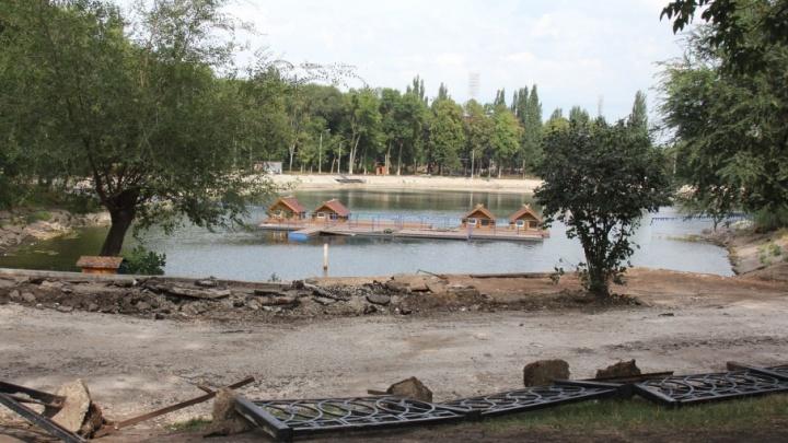 Лебеди из парка Металлургов остались без дома и ютятся в маленькой будке