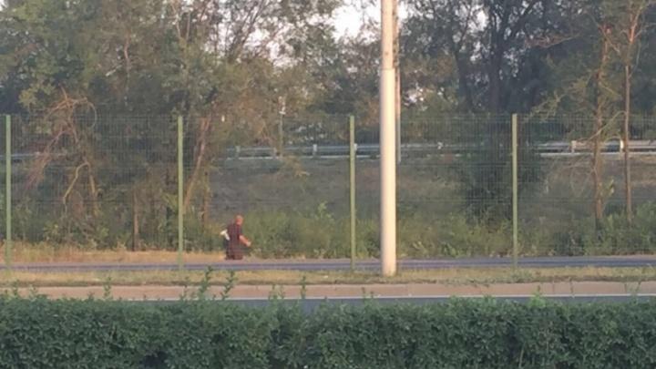 Похитителя автомагнитолы поймали возле парковки торгового центра под Ростовом