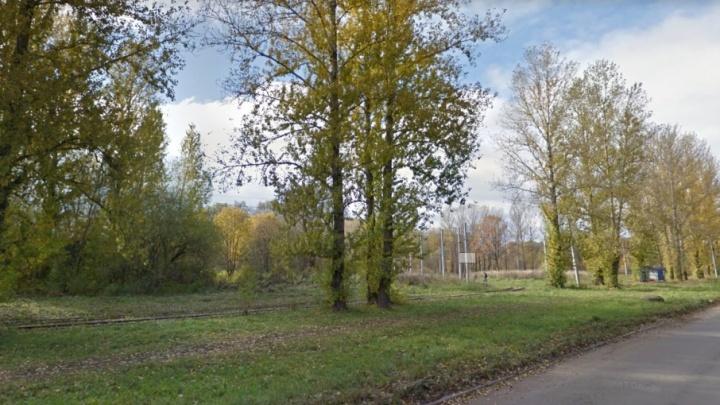 Землю бывшего парка аттракционов в Брагино отдадут застройщикам