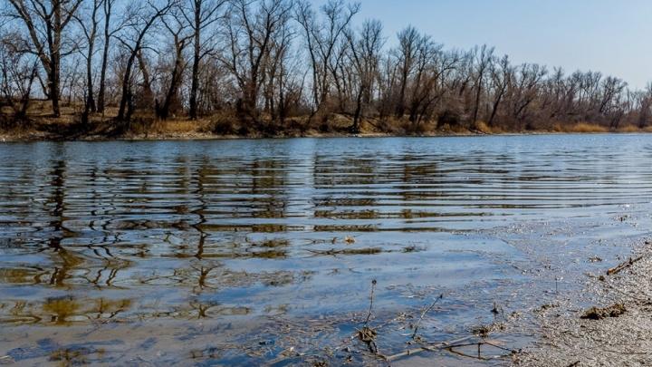 Весна в Волго-Ахтубинской пойме: волгоградский фотограф снял пробуждение природы