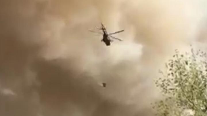 Лесной пожар в Усть-Донецком районе охватил уже 4200 гектаров
