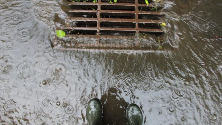 Дождь и сильный ветер: погода приготовила сюрприз участникам «Кросса нации»