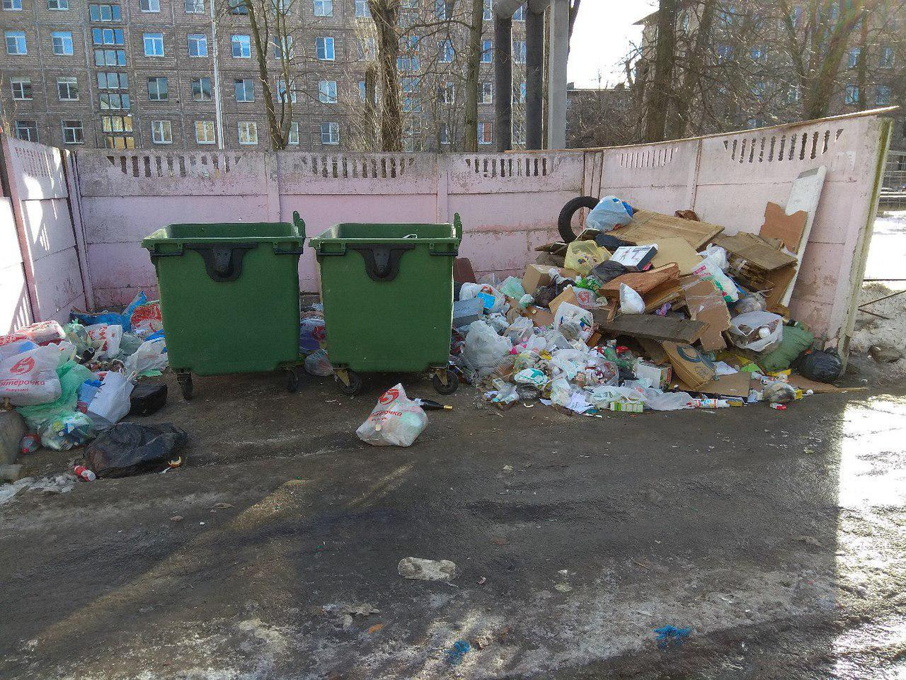 """Читательница """"Фонтанки"""" Анна:  улица Ольминского, 20."""
