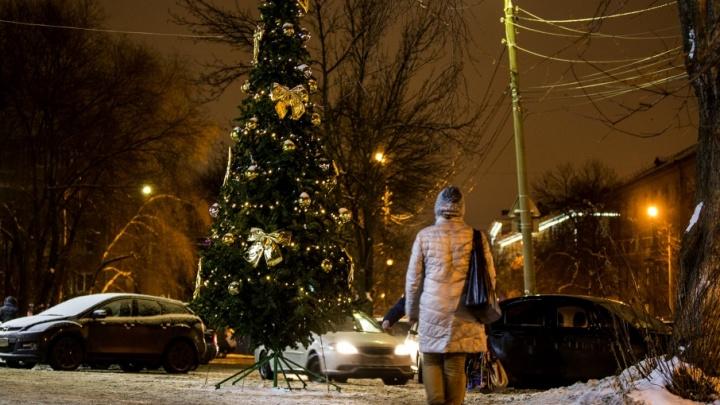 Карта ёлок Ярославля: где встретить Новый год