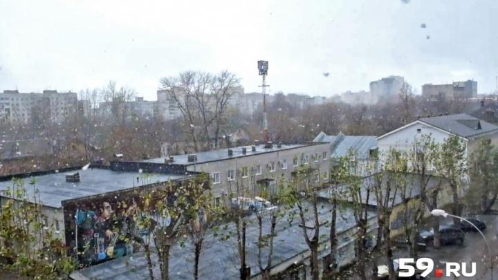 Первый снег в Перми: синоптики — о прогнозах на конец октября