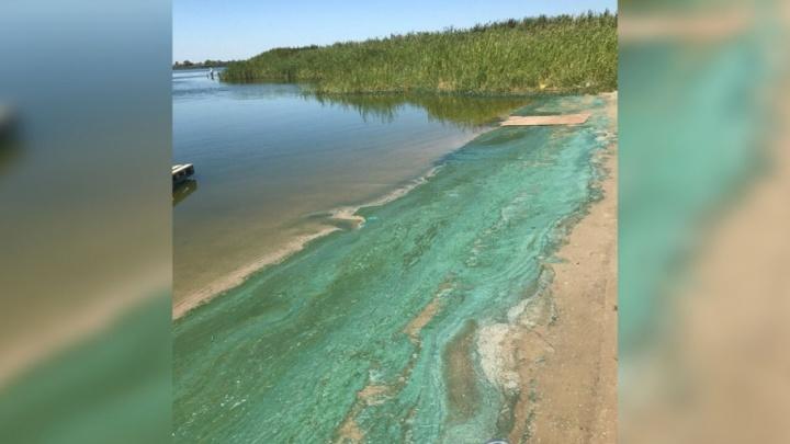 На Голубых озерах песок стал бирюзовым из-за размножения бактерий