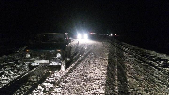 В Кошкинском районе водитель «Нивы» насмерть сбил пешехода