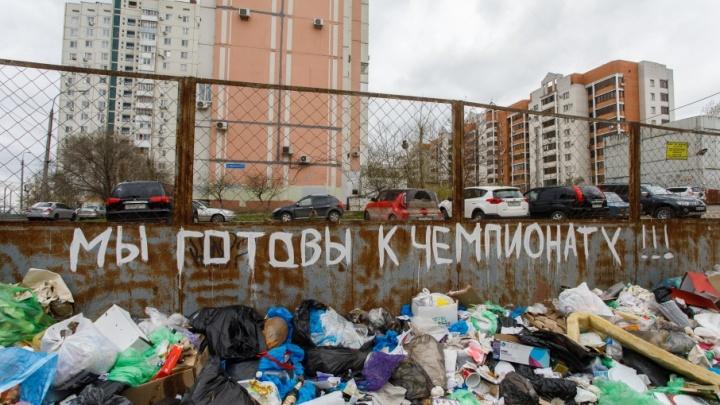 Волгоградцы назвали свалку на Тулака «готовой к чемпионату мира по футболу»
