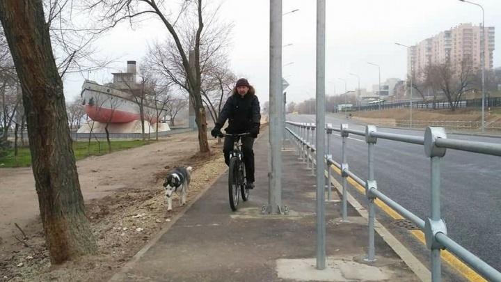 Столбы препятствия на велодорожке вдоль Нулевой Продольной объяснили теснотой