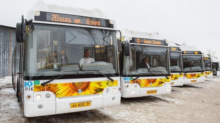 Волгоградцам 18 марта подарят день бесплатных поездок на автобусах и трамваях