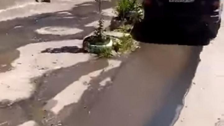 Зловонный ручей из нечистот залил ростовскую улицу
