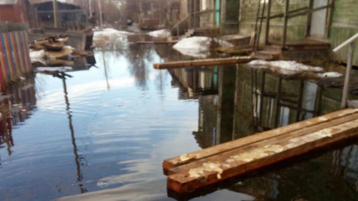 Остров невезения: на Бревеннике затопило целый дом
