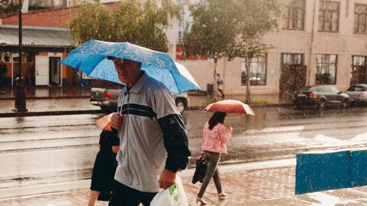 В Тюмени ждут сильный ветер и грозу