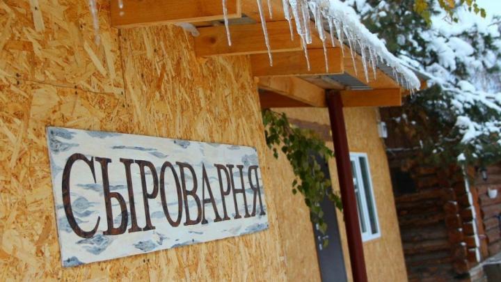 Сыроварня в Подгорах и хаски в Тольятти: куда самарцам предлагают отправиться на Новый год