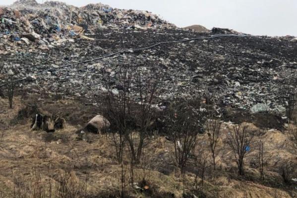 В «Скоково» растут мусорные горы