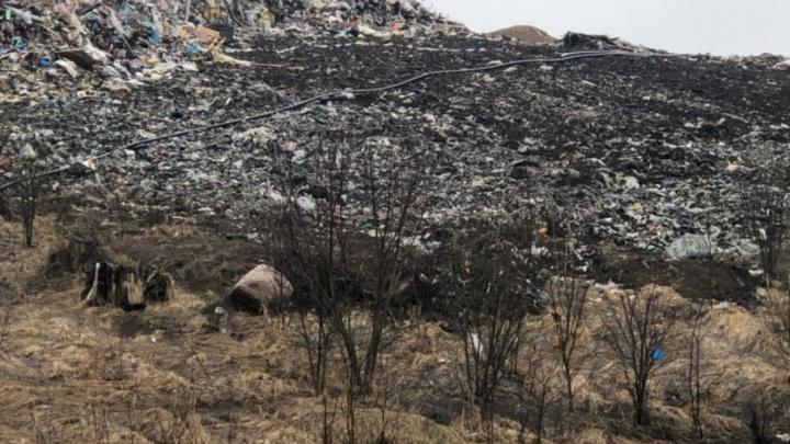 Правительство: на полигон «Скоково» мусор будут ввозить не больше года