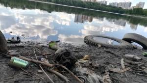 Пивная банка, ветки, череп, старые шины – так выглядит берег Городского пруда.