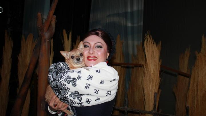 Волгоградский музыкальный театр принял в труппу собаку