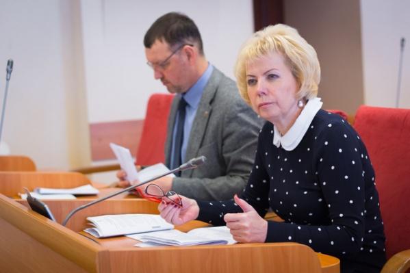 Депутаты решили, на что потратить дополнительные доходы казны