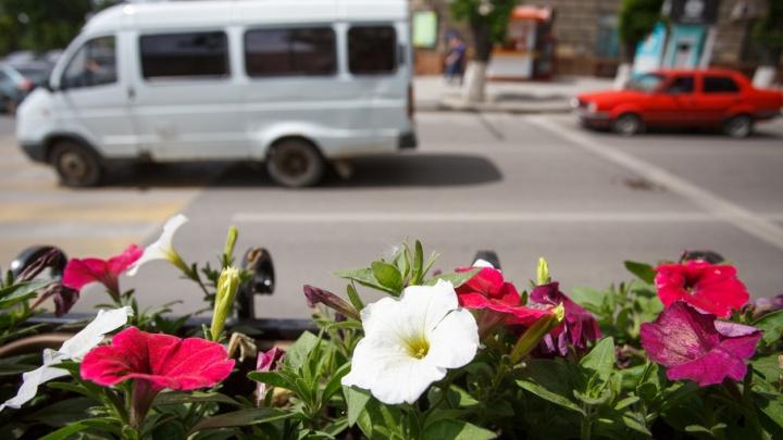 Чугунную решетку в центре Волгограда украсили цветочными горшками