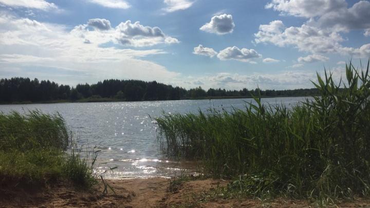 В Ярославской области из реки вытащили тело шестилетней девочки