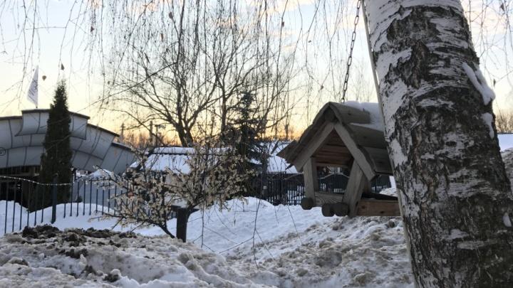 В ноябре в Ярославле ударят первые морозы