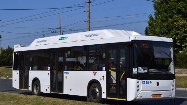 Мэрия: «Новые автобусы поставят в Ростов в срок, несмотря на проблемы с торгами»